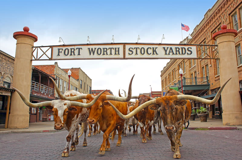 Fort Worth Stockyards Fort Worth Tx 76164