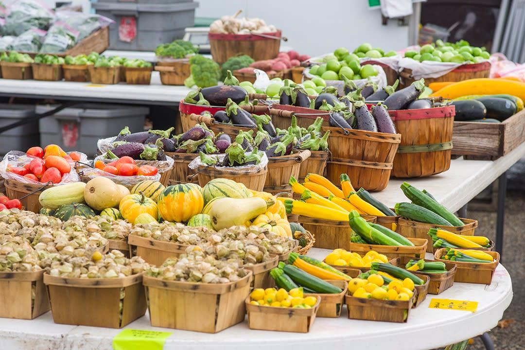 Rochester Farmers Market | Graham Park