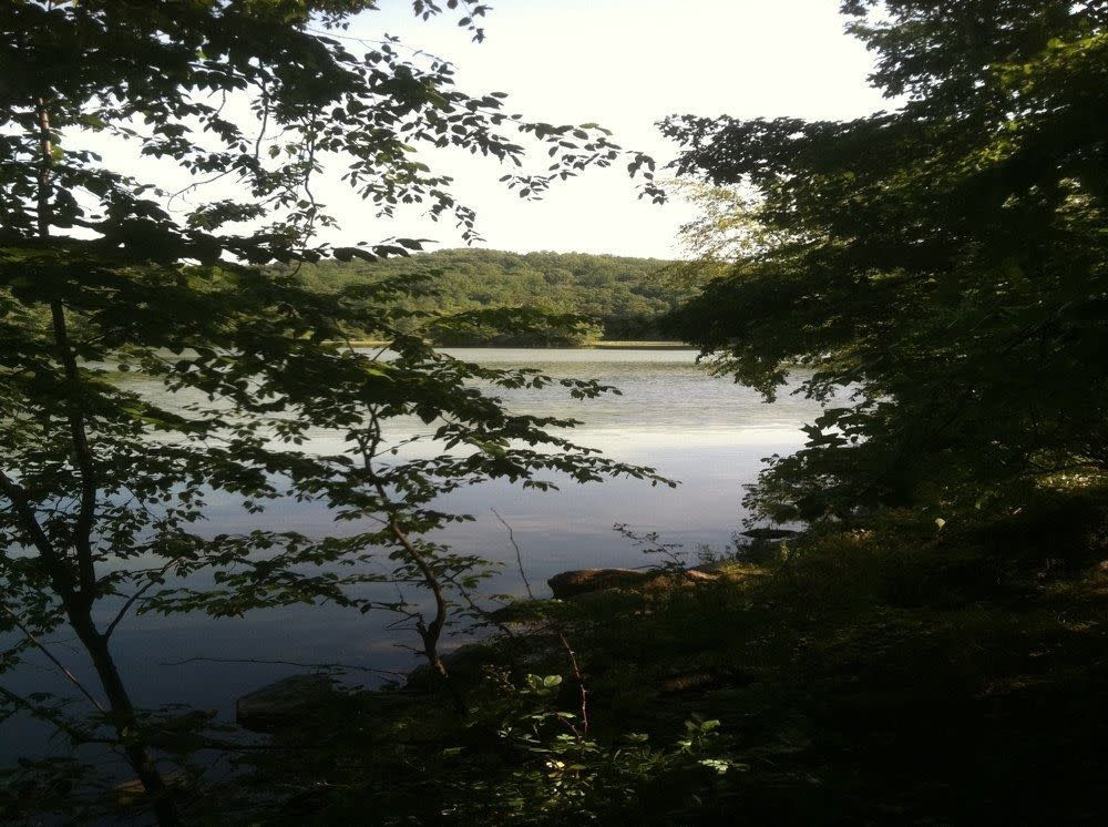 Silver Lake Ny >> Silver Lake Preserve