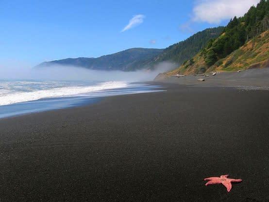 Top Ten Beaches Of Humboldt County
