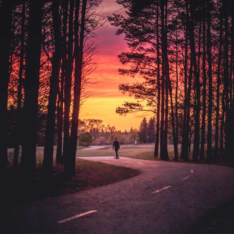 Girl skate boarding in Birds Hill Park at sunset
