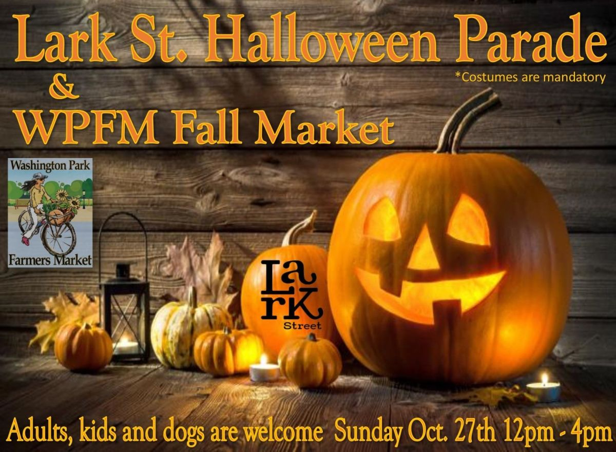 Lark St Halloween Parade and Fall Market. Click to enlarge Image.