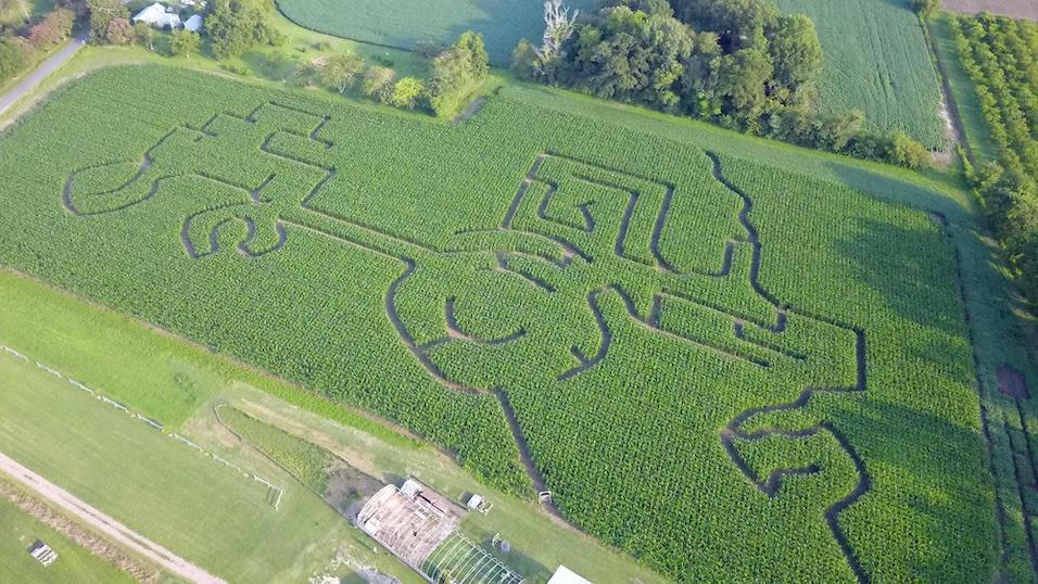 Corn Maze at Bergey's Breadbasket