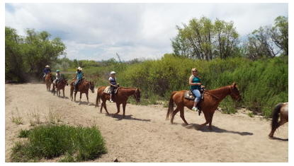 Boulder Horseback Riding   Trail Rides, Dude Ranches  