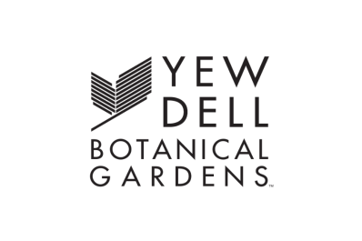 yew dell 7