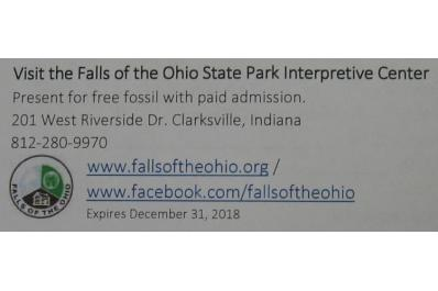 Free Fossil Coupon photo