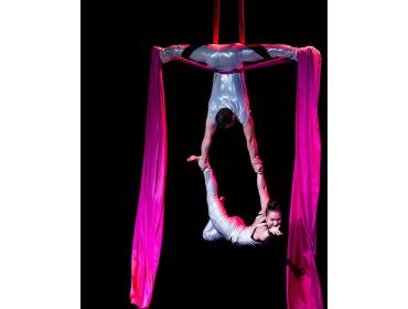 Aerial Arts of Rochester