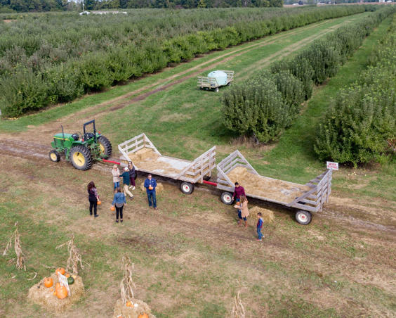 Beasley's Orchard | Hay Ride Pumpkin Patch