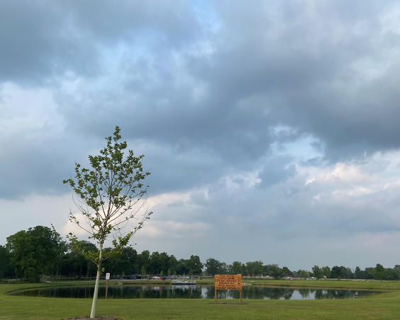 Gibbs Memorial Park | Pond