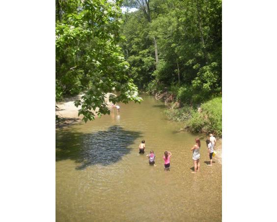 Ellis Park Creek Danville