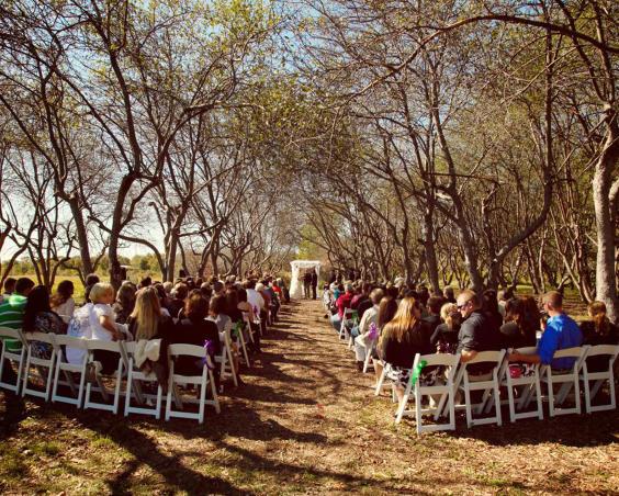 Martha's Orcahrd - Outdoor Wedding Ceremony
