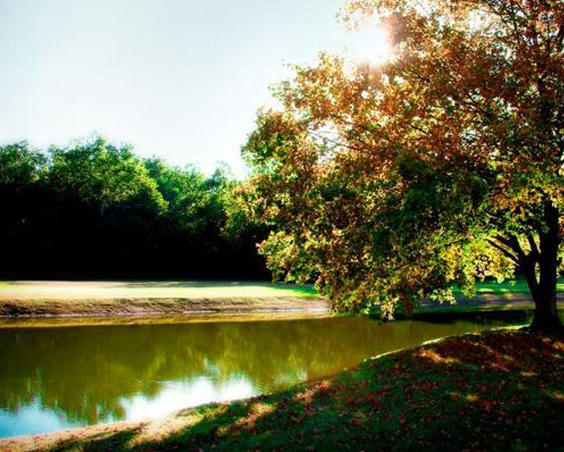 Pond at Prestwick Country Club