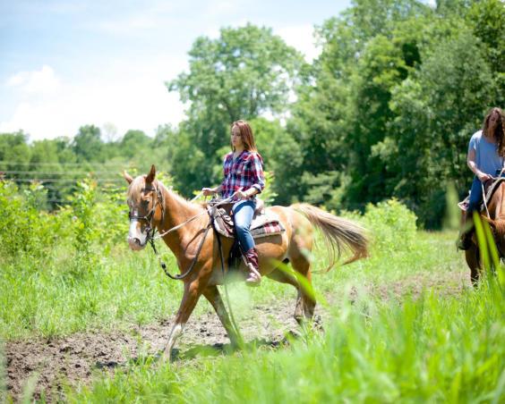 Natural Valley Ranch - Trail Riding Horseback