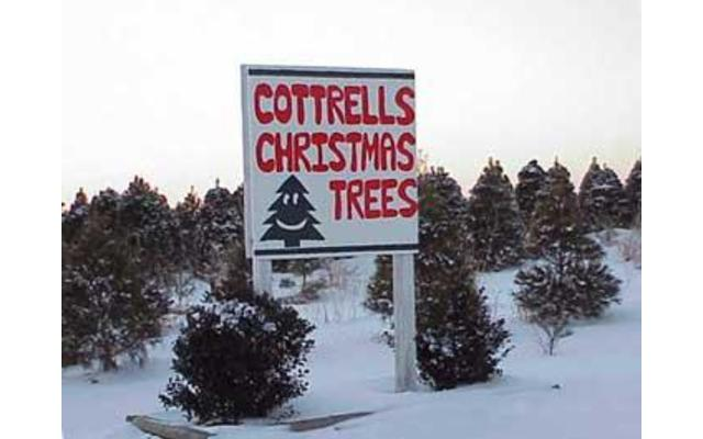 Cottrell's Christmas Tree Farm