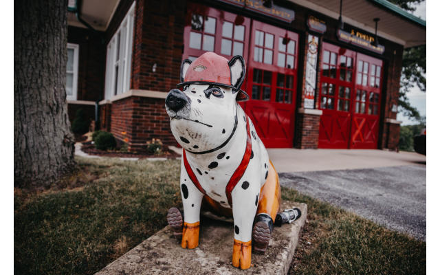 Sporky the Firehouse Hog