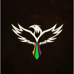 Soaring Bird Logo