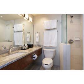 Albion Room Bathroom