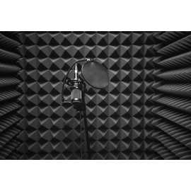 Commercial Music or Voice Production
