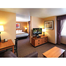 King Executive Suite Living & Sleeping Area