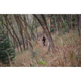 Riding the Mueller Park Trail, photo by Brant Hansen