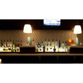 Ruth's Chris Steak House Bar