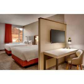 Guest  room-Queen Suite
