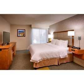 1 Bedroom King Suite (Bedroom)