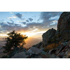Mountain Mahogany and a rock outcrop near the saddle, photo by John Badila