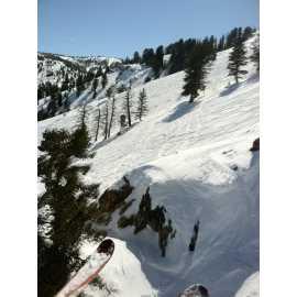 Ski N See_1
