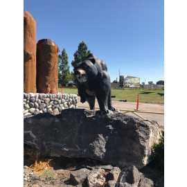 Yellowstone Bear World_1
