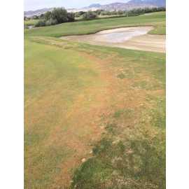 Riverbend Golf Course_2