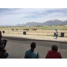 Salt Lake County Equestrian Park_2