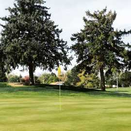 Rose Park Golf Course_1