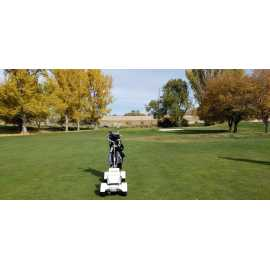 Forest Dale Golf Course_0