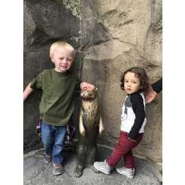 Hogle Zoo_0
