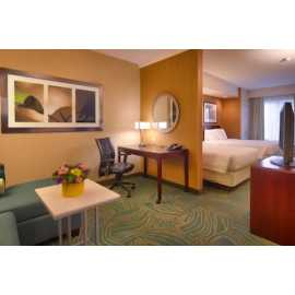 SpringHill Suites by Marriott Salt Lake City Downtown_1