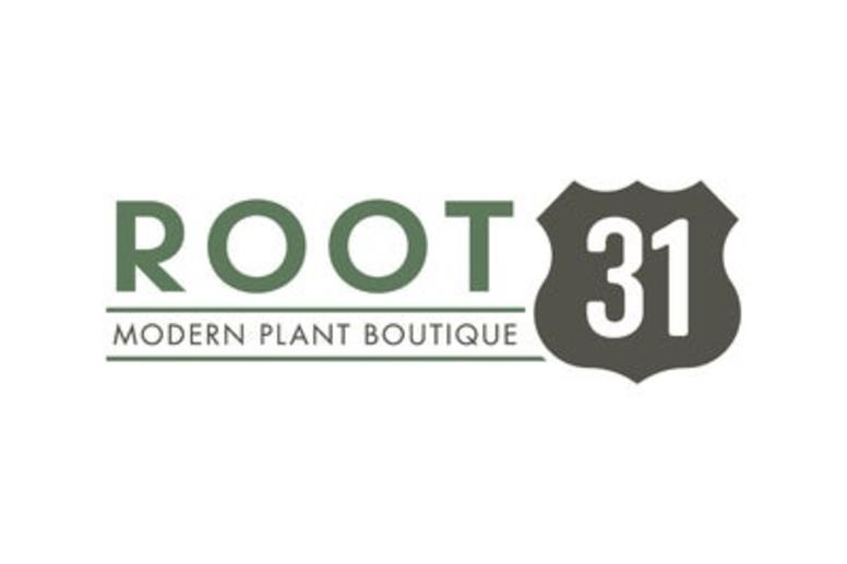 Root 31