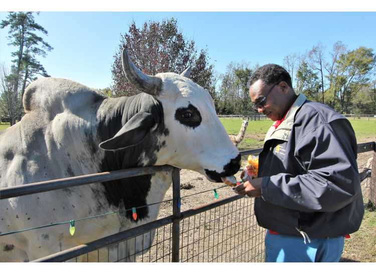 SVR-Agritourism-Petting Zoo