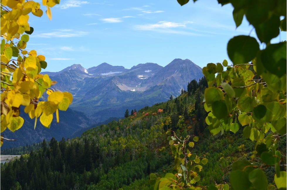 American Fork Canyon 4