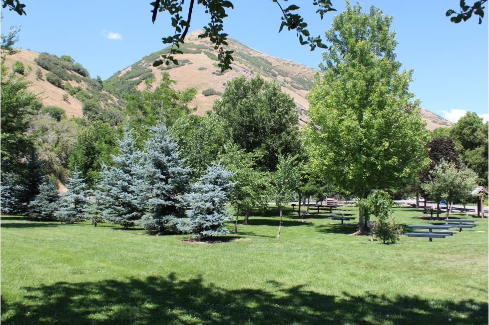 Jolley's Ranch Picnic Area