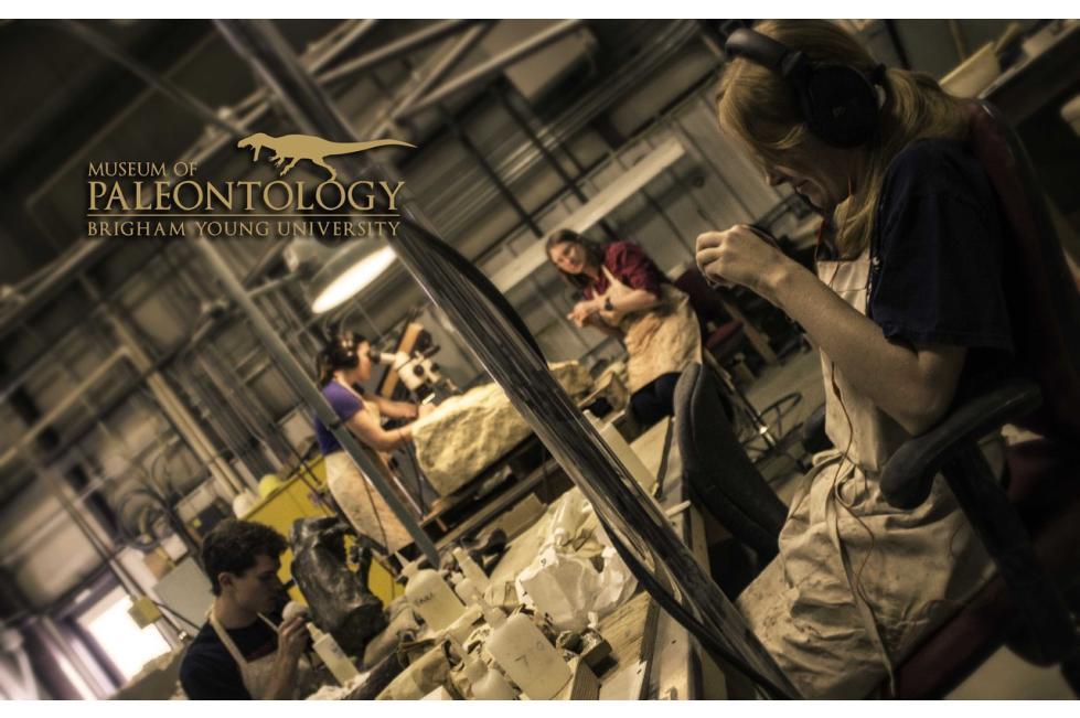 Paleontologists at Work