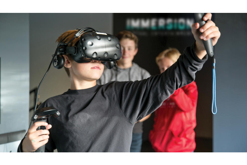 Immersion Virtual Reality