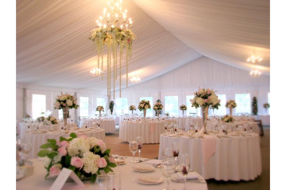 Cary_Wedding_Reception.jpg