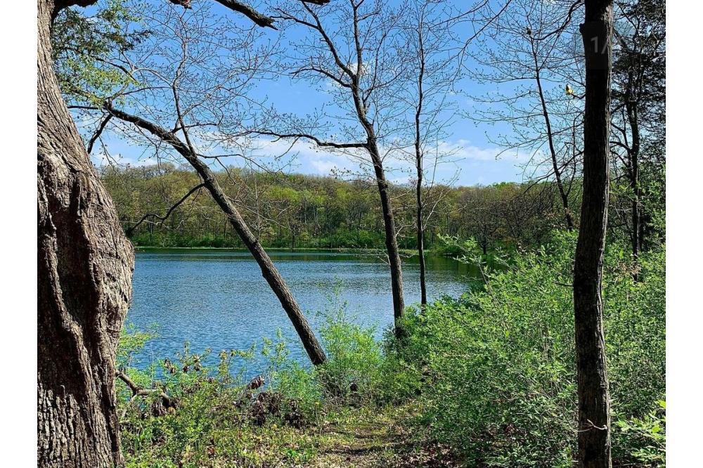 Bromley Kettle Pond