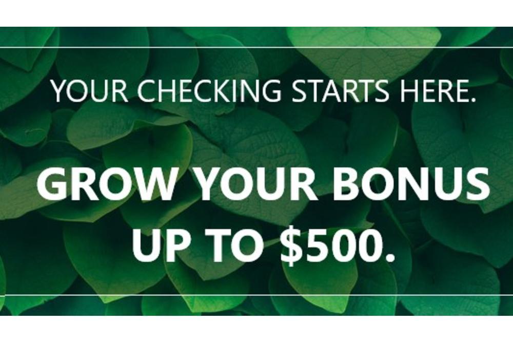 Grow your bonus