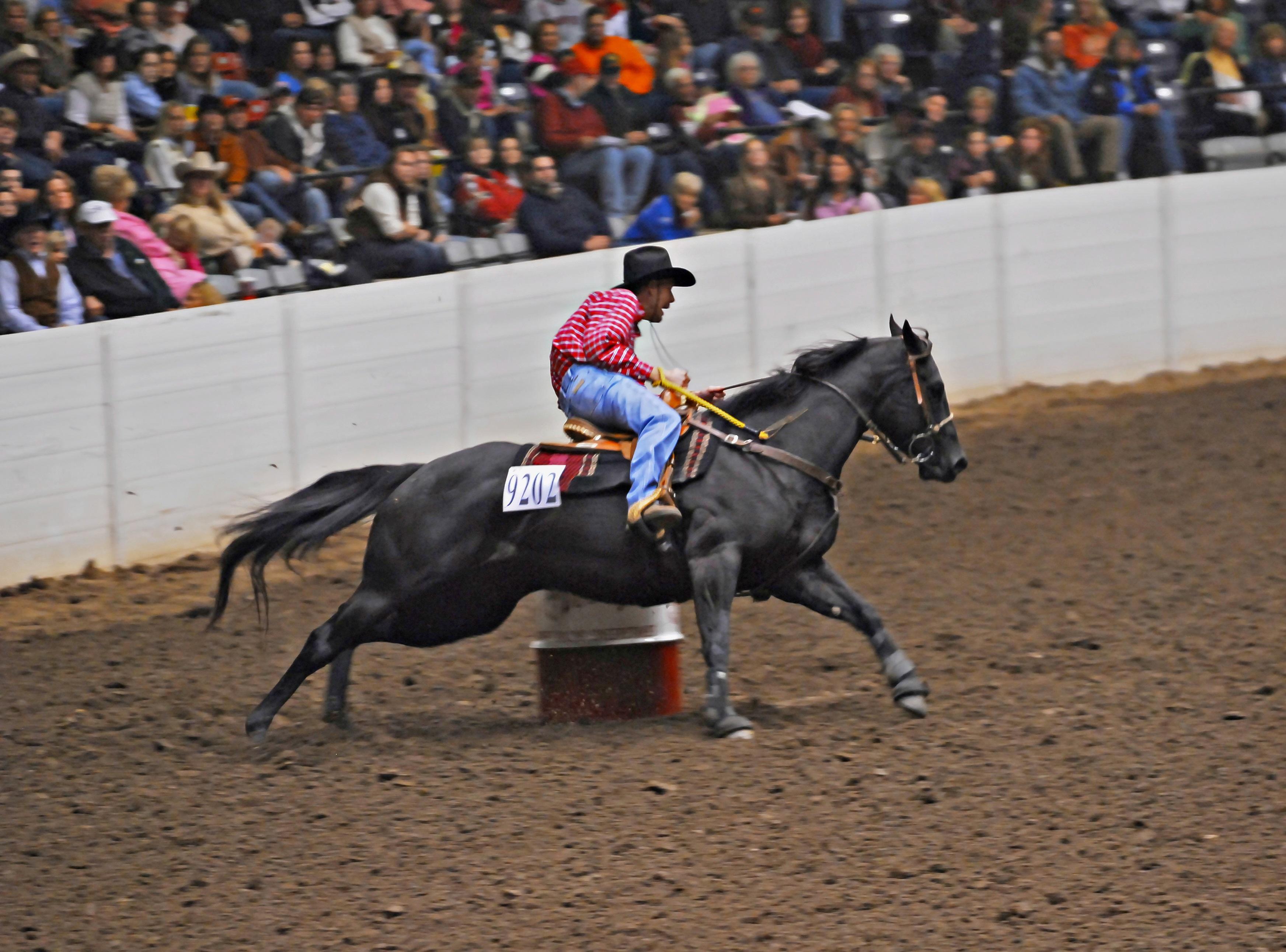 All American Quarter Horse Congress 9 29 20 10 25 20