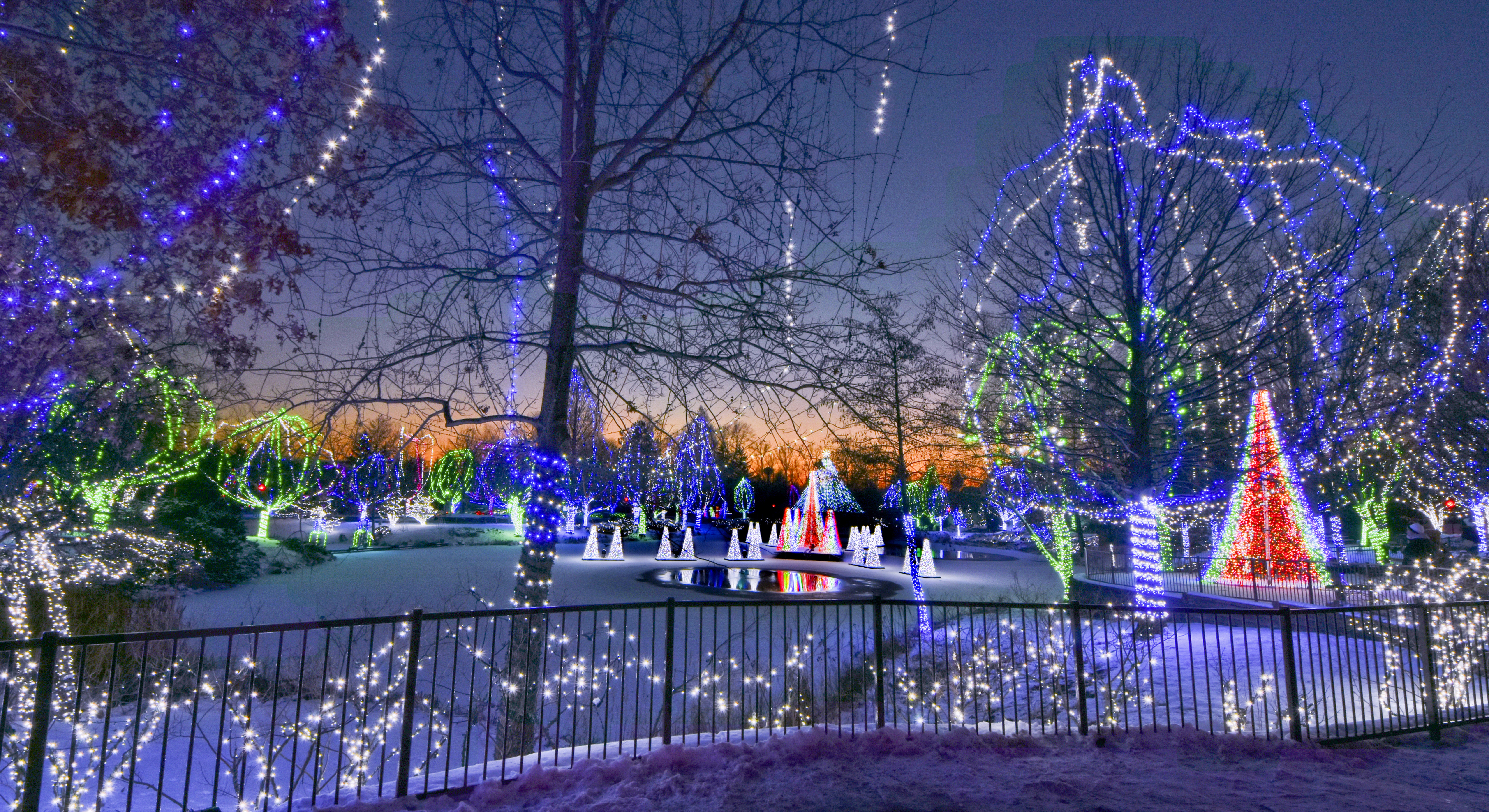 Columbus Ohio Christmas Events 2020 Wildlights | 11/20/20   1/5/21 | Powell, OH 43065
