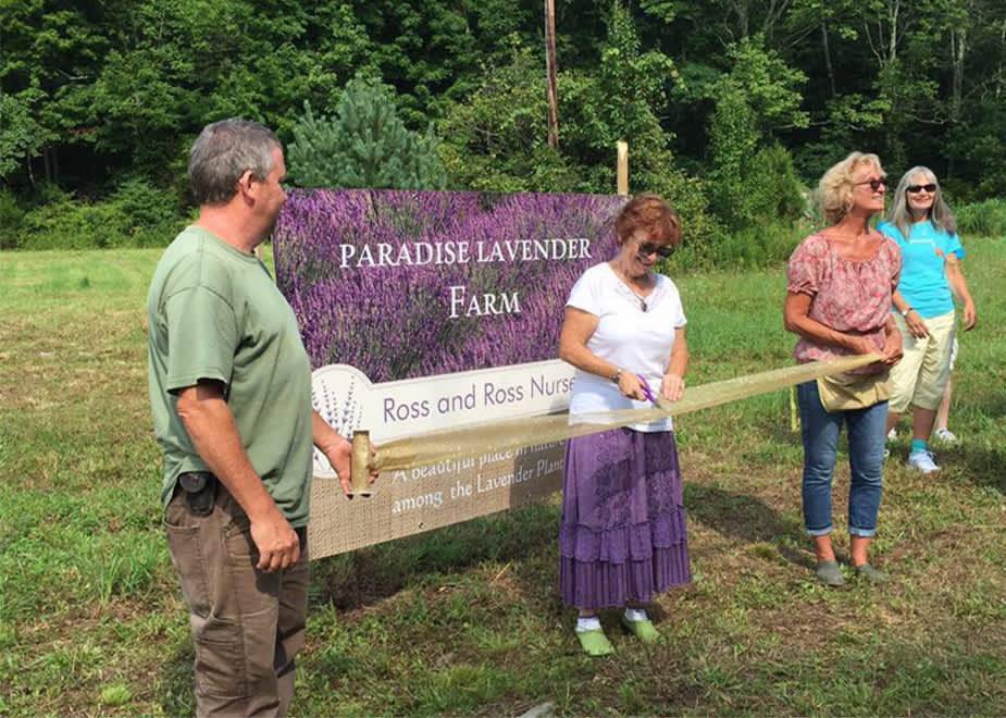 Paradise Lavender Farm And Ross Ross Nursery Cresco Pa 18326