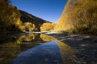 Arrowtown River Trail in Autumn