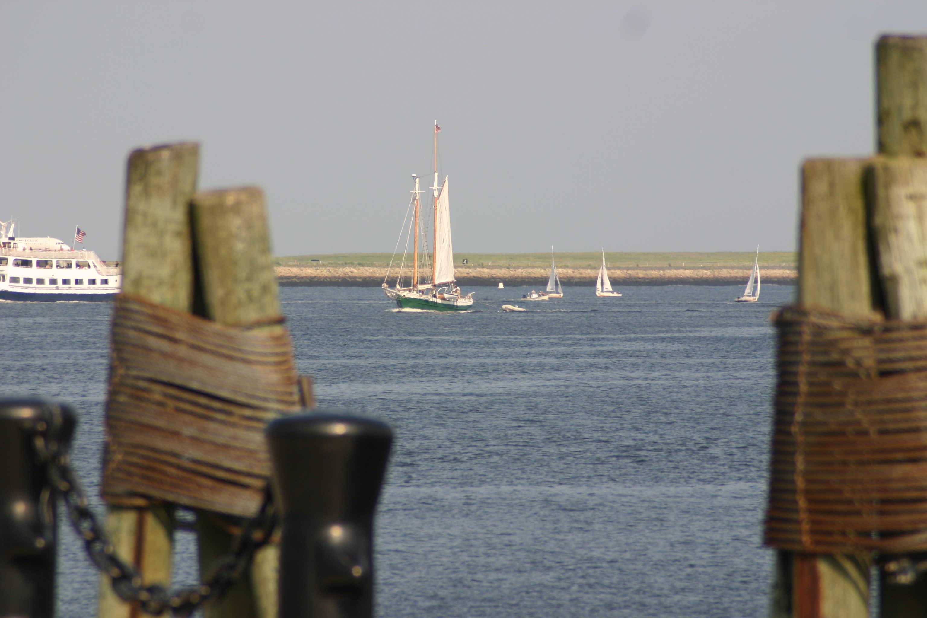 Boston Harbor Tall Ship Sailing